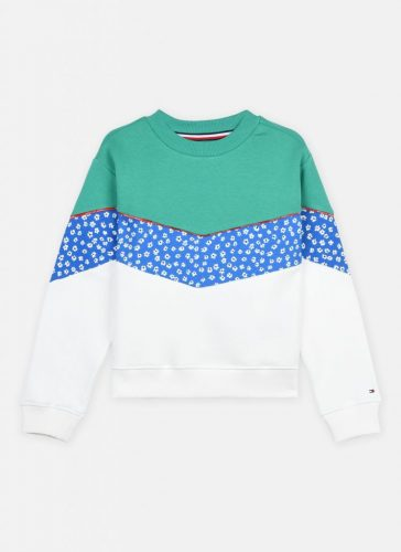 Floral Blocking Sweater Tommy Boys